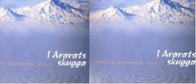 I Ararats skugga-